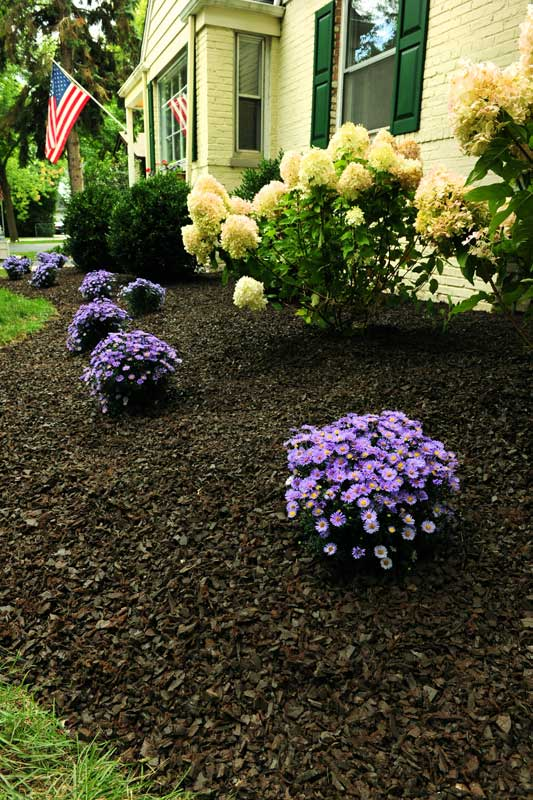 Rubber Mulch Pictures - Images from GroundSmart Rubber Mulch