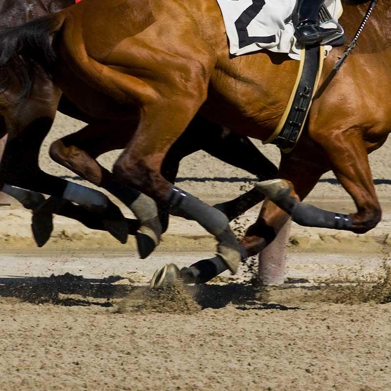 Rubber Equestrian Infill
