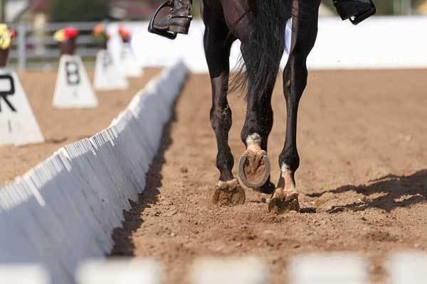 Equestrian Arena Infill Groundsmart