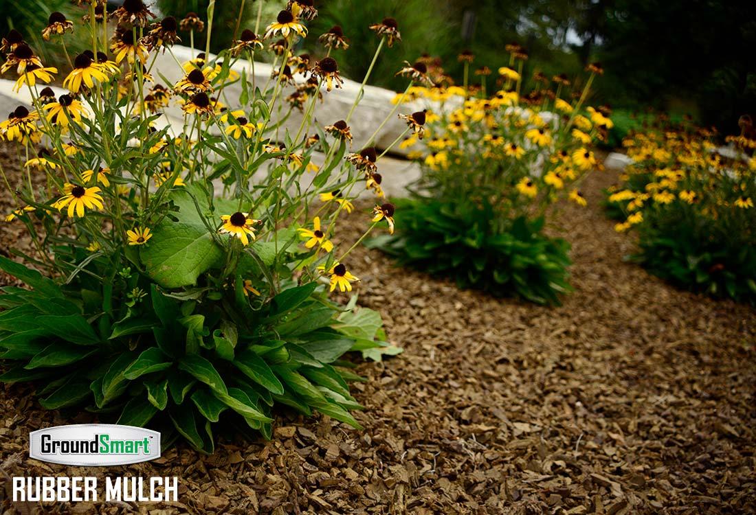 Landscape Rubber Mulch best for growing flowers